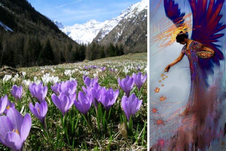 Leggenda della Valle D'Aosta sulla vegetazione e flora